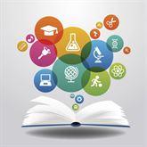 Docente di Informatica impartisce lezioni in materie scienti